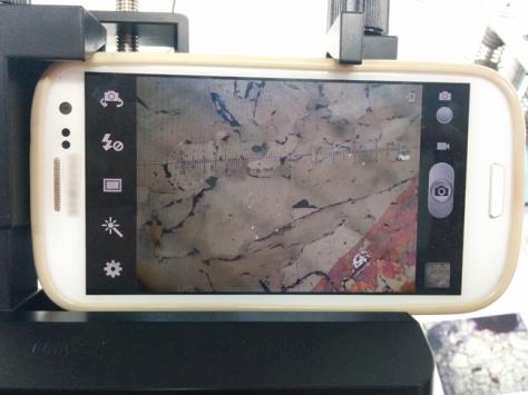 Detalle de la foto tomada con el móvil.